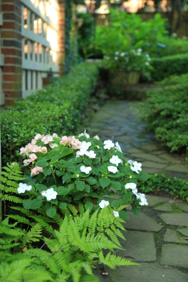 Image from http://columbiametro.com/Columbia-Metro/October-2015/A-Cottage-Garden/